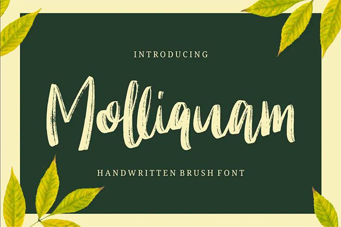 Molliquam best brush stroke fonts