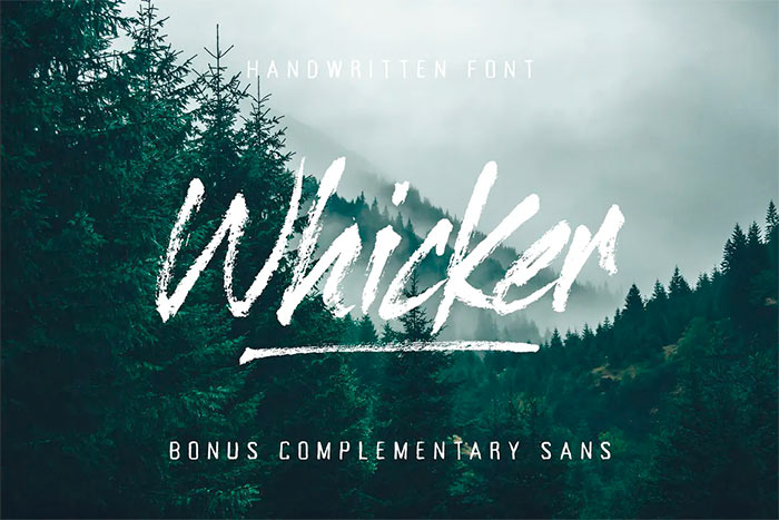 Whicker Brush Script Font Duo